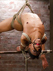 Extreme bondage, clamps, weights, hooks, single tail, cane and strap-on fucking. Nikki endures it all but will the audience let this whore cum?