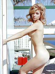 GUILELESS CHARMER   our May Playmate is a pretty Hollywoodian with no eyes for acting     At first glance, May Playmate Sharon Cintron would appear to be a rather perplexing young lady. As a denizen of Hollywood, Cal�