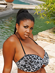 Ebony in Pool