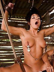 Sandra trains two hot foreign slaves with electricity