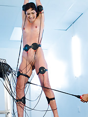 Wet, hard-bodied sub takes the EMS pads and cattle prod until she drools all over her own tits in this lesbian electrosex update.