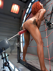 Sexy, tall, dark skinned Daisy Ducati uses a web of machines & BDSM toys to cum. She takes the Caterpillar - a 10in beast cock thicker than her arm!