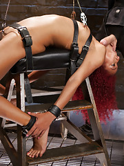 Gorgeous newbie Daisy Ducati is anal trained and fucked in the ass, challenged with painful stress positions and face fucked