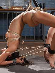 Upper Floor slave Lyla Storm is stripped of her rank and sent back to the basement to be punished and re-trained