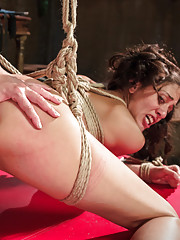 Lyla Storm gets lesbian punishment and deep doggie anal fucking in bondage by Lea Lexis.