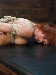 Veronica Avluv Super Squirter Anal Submissive Bondage Slut!