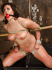 Penny is known for two items: Her gigantic tits and her big mouth.The secret is that Penny does like to submit, but one has to cane her beyond words.