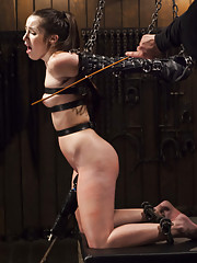 Newbie gets beat into the world of BDSM