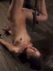 Lyla Storm endures brutal torment during our April Live shoot.