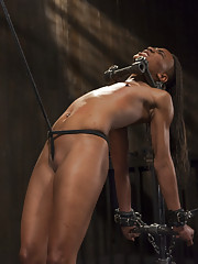 Nikki and Daisy are used to make the other suffer in grueling predicament bondage.